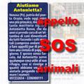 aiutiamo  Antonietta Russo